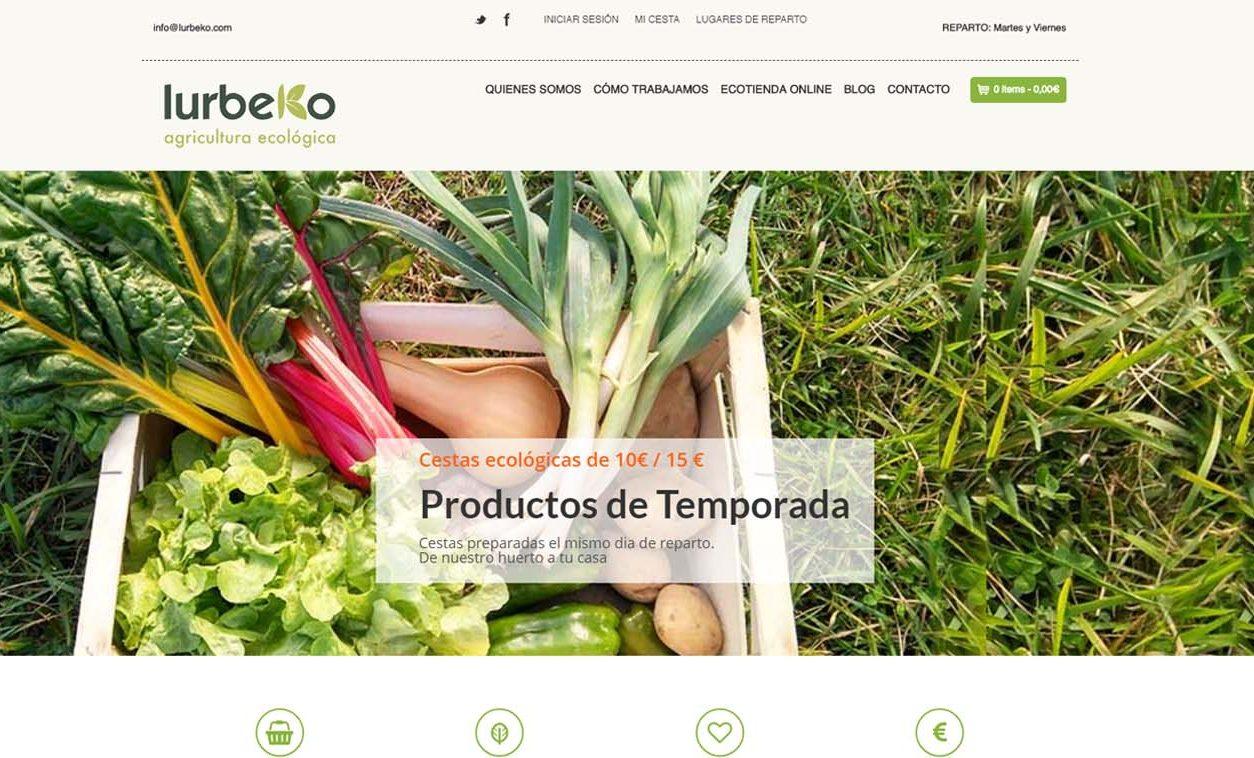 Diseño Web y Logotipo LURBEKO