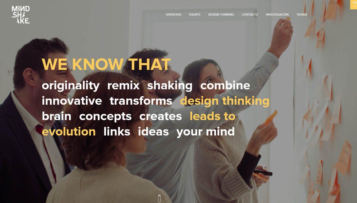 Adaptación WordPress Mindshake Spain